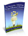 E-Book version of 'Making Energy Efficient Choices'